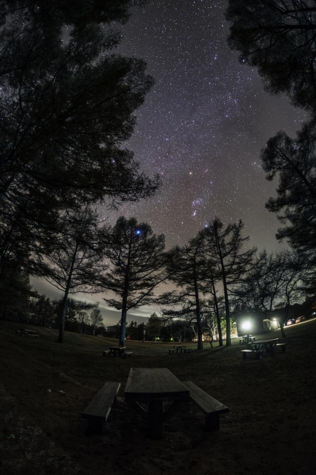 戦場ヶ原・森の中の星空