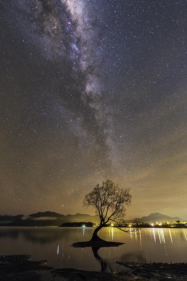 ワナカ湖の1本木と天の川