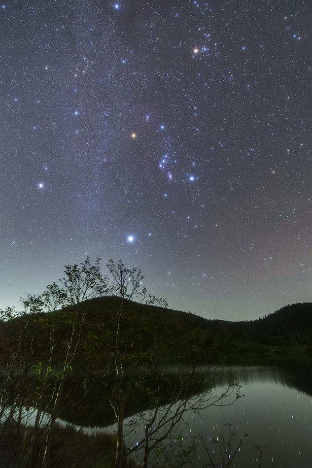 草津白根山弓池の白樺と冬の星座