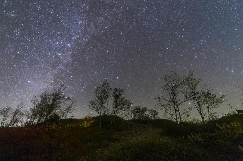 見上げた北天の星々
