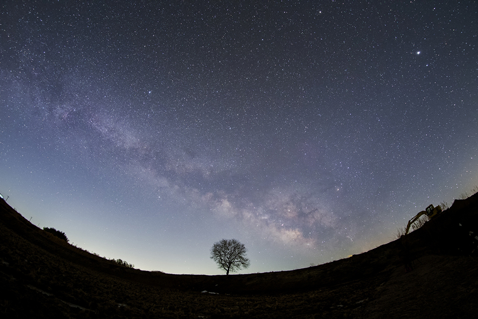 くるみの木とはくちょう座〜さそり座の天の川
