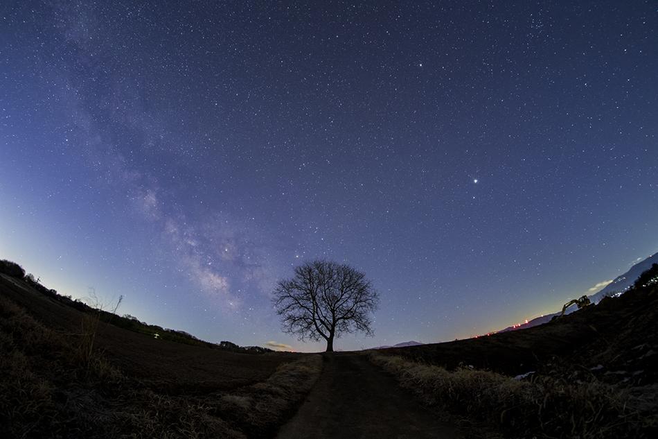 くるみの木と夜明けの天の川