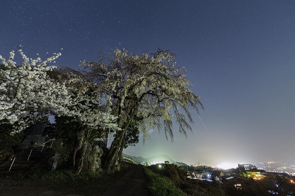 下川田のしだれ桜と流星