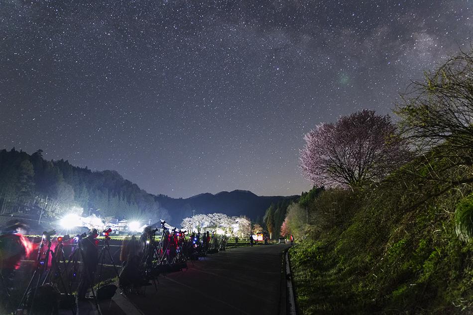 野平の桜の撮影風景