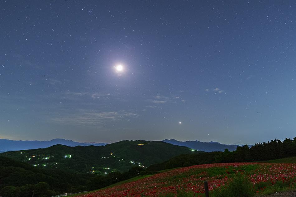 天空のポピーと月