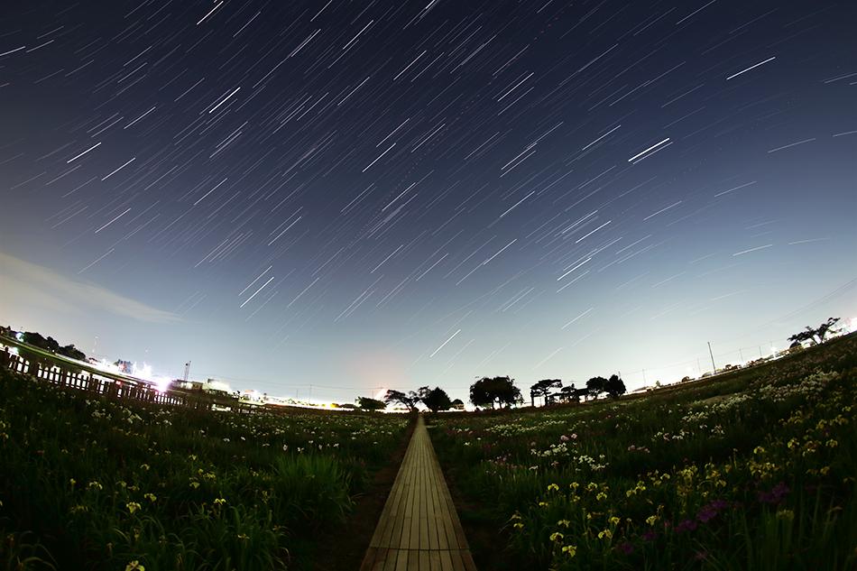 菖蒲城址あやめ園と昇る夏の星座