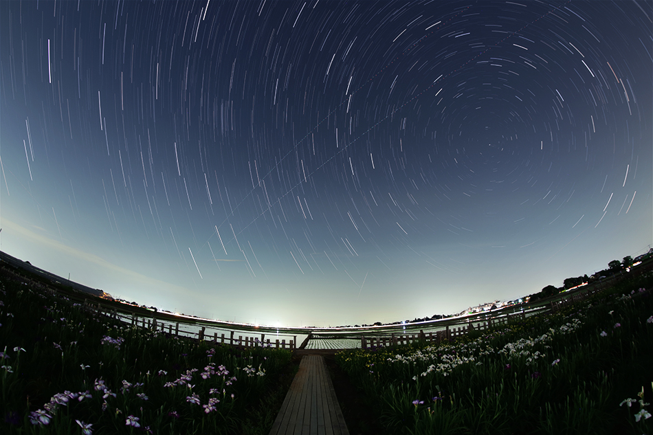 菖蒲城址あやめ園と星空