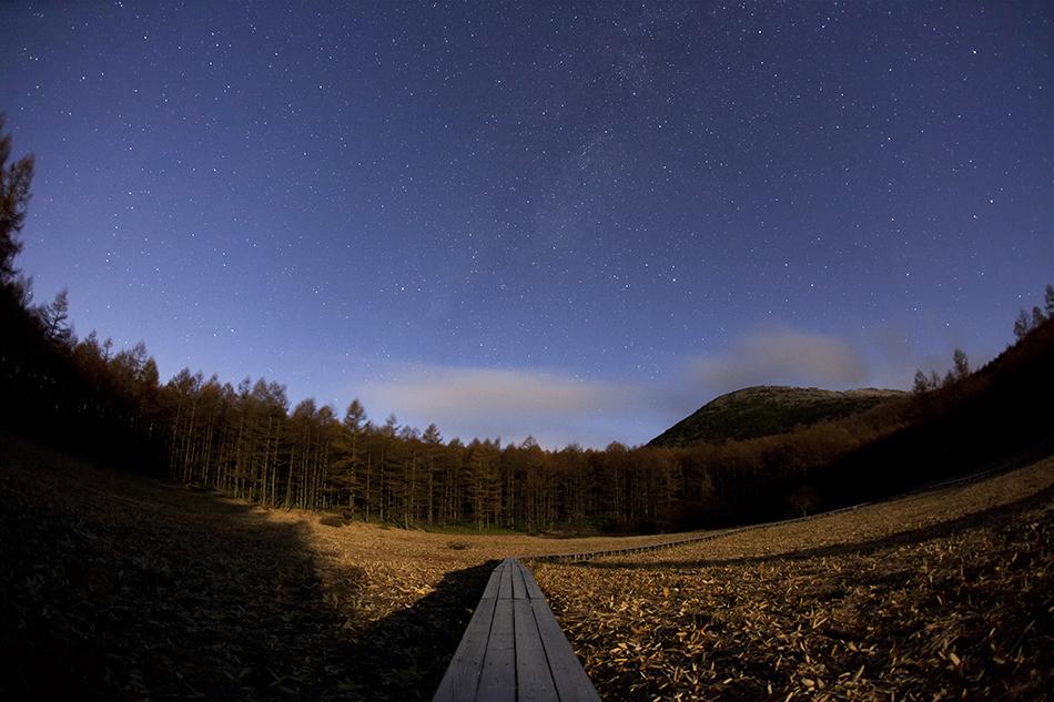 月明かりの湯の丸高原と夏の大三角