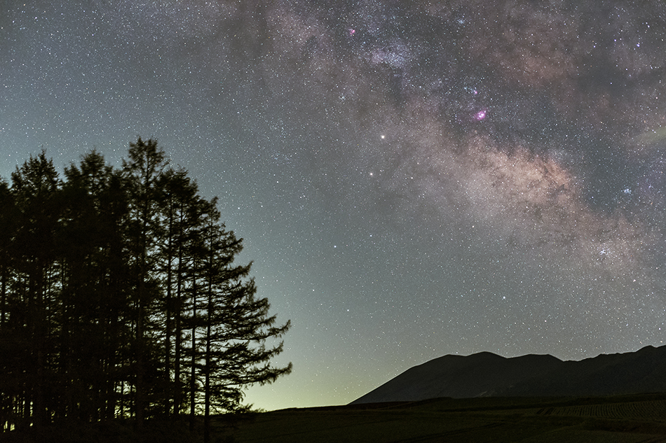 嬬恋村カラマツの丘に昇る銀河中心部