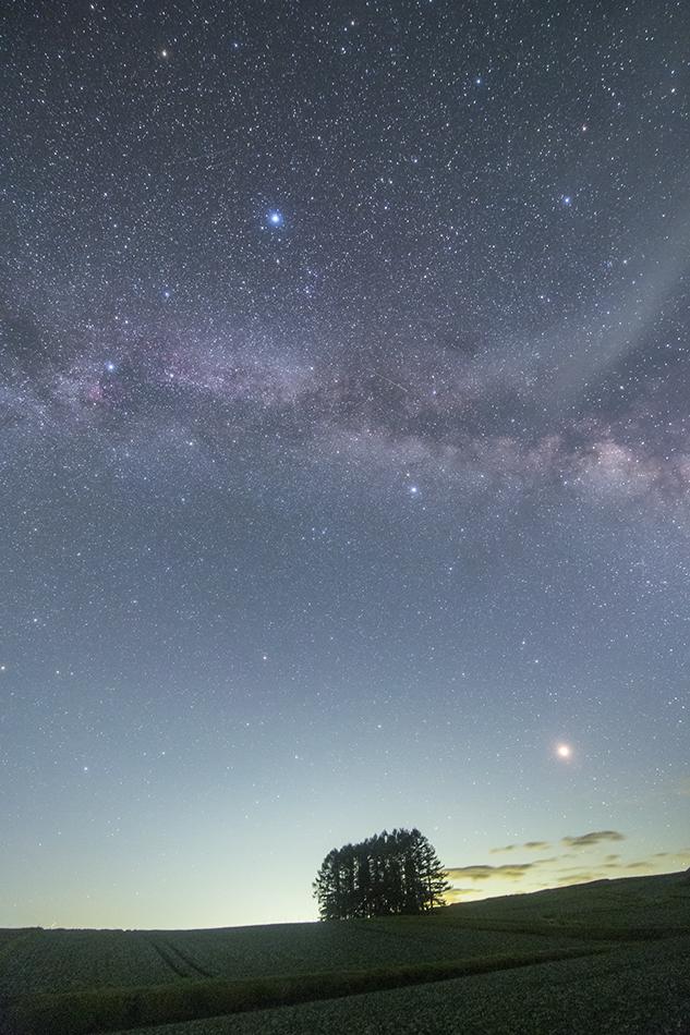 嬬恋高原のカラマツの丘と夏の大三角と火星