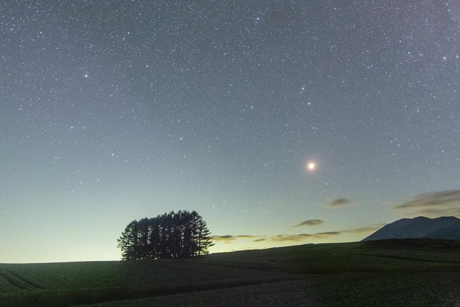 嬬恋村カラマツの丘と火星