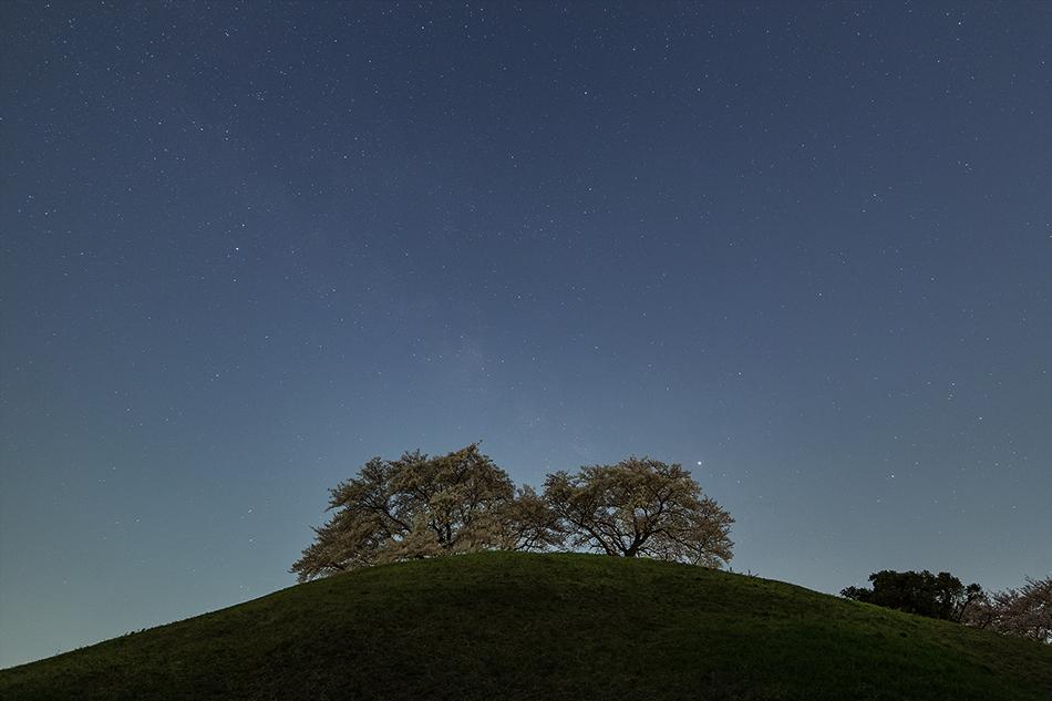 丸墓山古墳の桜とさそり座からわし座