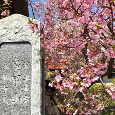 成福寺 入口