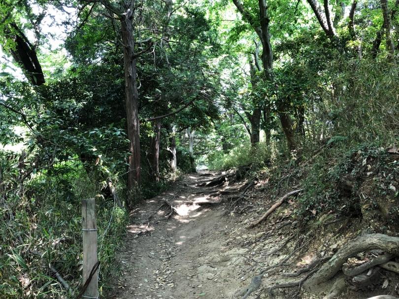 大仏ハイキングコース.jpg