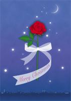 クリスマス電報 Christmas rose