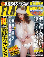 flash_20101214.jpg