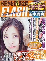 flash_20110106.jpg