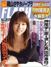 flash_20110201.jpg
