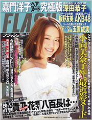 flash_20110215.jpg