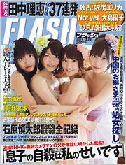 flash_20110308.jpg