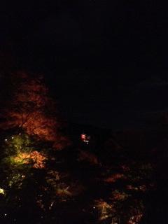 夜15.JPG