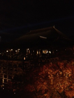 夜16.JPG