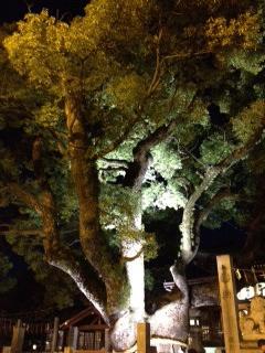 石切神社3.JPG