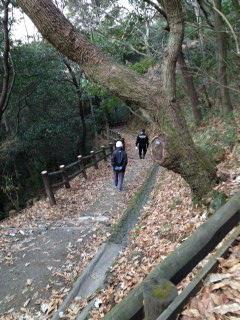 枚岡山展望台1.JPG