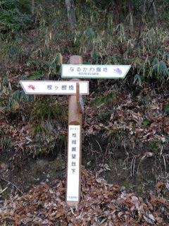 枚岡山展望台2.JPG