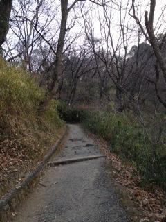 枚岡山展望台3.JPG