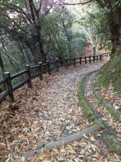 枚岡山展望台6.JPG