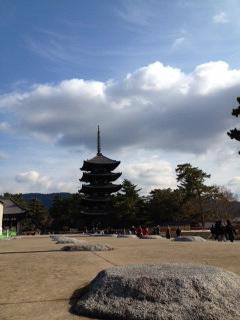 興福寺5.JPG