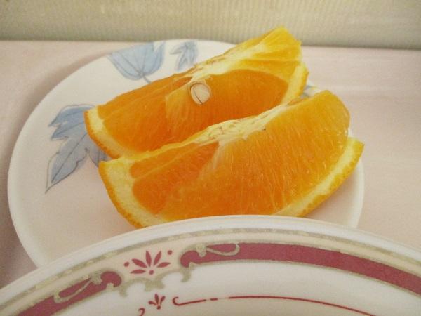 2019年8月9日(金)【朝食】コッペパン 野菜のトマト煮 オレンジ ジョア