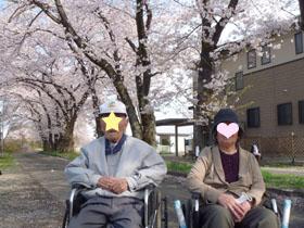 一峰・小幡花見3.JPG