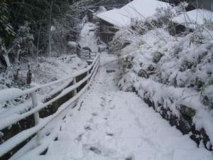 雪景色坂道