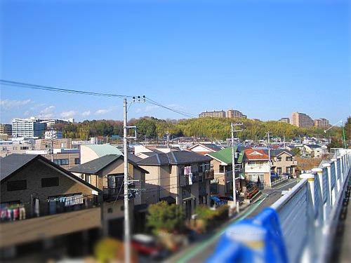 茅ヶ崎城址公園
