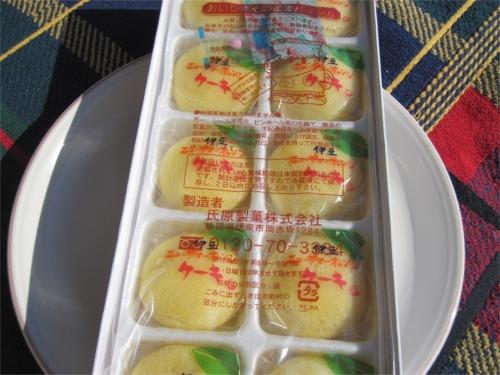 伊豆ニューサマーオレンジケーキ