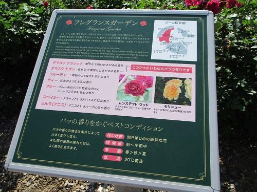 山梨県富士川クラフトパーク 道の駅みのぶ「フレグランスガーデン」