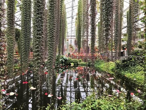 富士花鳥園 2018