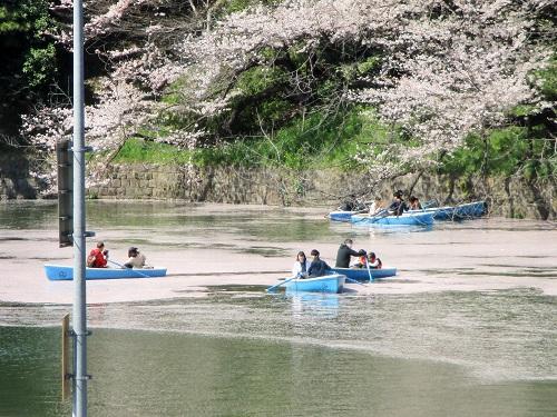 千鳥ヶ淵公園2018