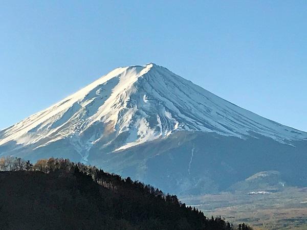富士河口湖温泉 ホテルニューセンチュリー【2020年1月】
