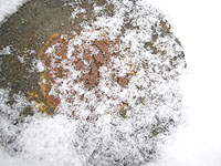 しめった雪