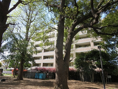 東京都 北区 不動産 トウリハウジング 十条台 マンション ライオンズガーデン十条台