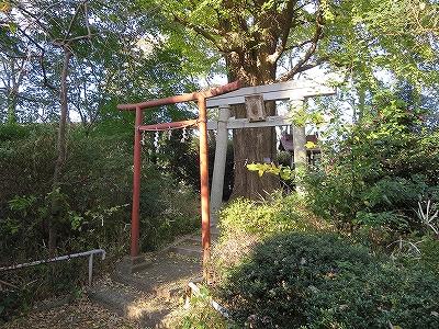 東京都北区 中十条 若宮八幡神社