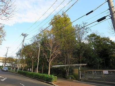 東京都北区 中十条 八幡山