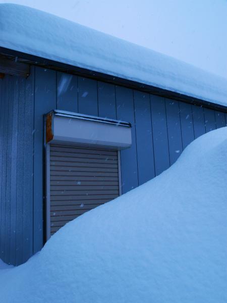 雪の1月2012 02