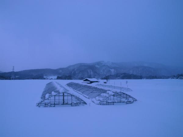 雪の1月2012 03