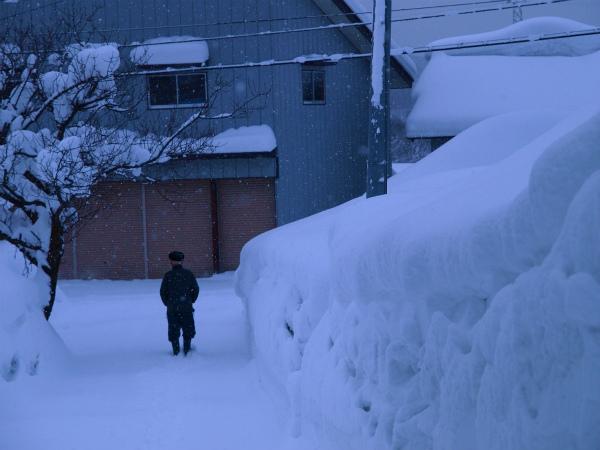 雪の1月2012 08