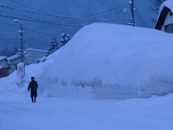 雪の1月2012 09