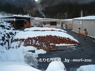 木曾ひのき体験ツアー工場見学編1mori-zou.jpg